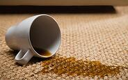 carpet cleaning service Jacksonville, FL