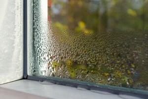 Window_condensation-1