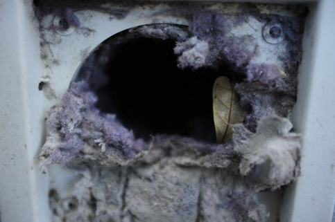 How Often Should I Clean My Dryer Vent?